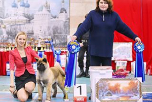 25.01.15 NDS, Sergiev Posad - Best Baby, Best in Show baby WINNER!!! (more than 20 beautiful babies!)